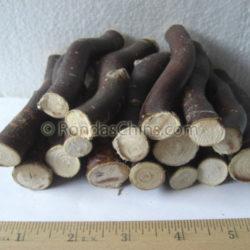 Corkscrew Willow Sticks