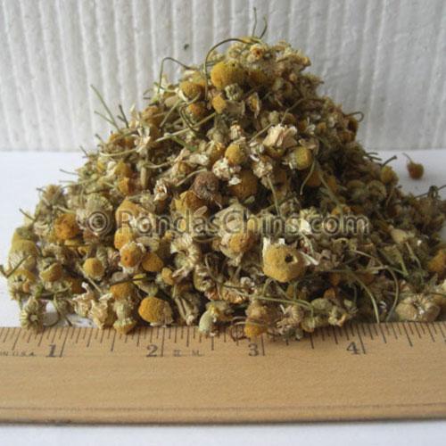 Chamonile Flower