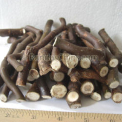 Corkscew Twigs