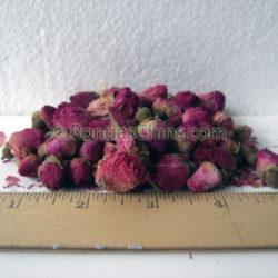 Deep Pink Rose Buds