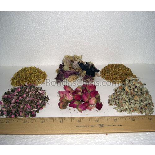 Spring Herb Sampler